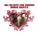 Big Hearts for Horses